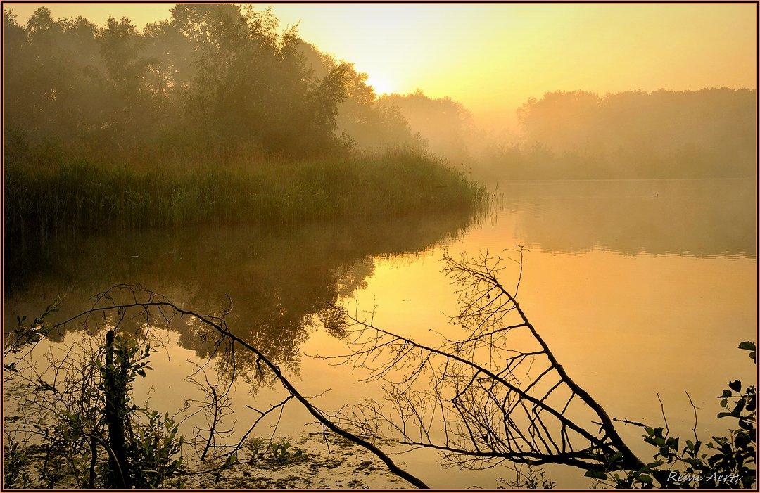 """фото """"***"""" метки: пейзаж, природа, summer, рассвет"""