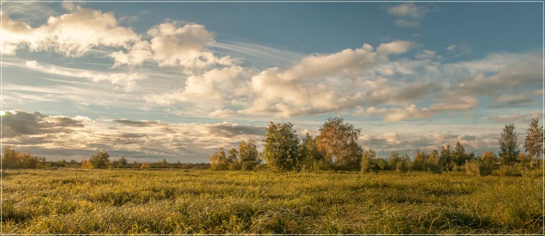 "фото ""Уж небо осенью дышало"" метки: пейзаж, природа, панорама, лето, луг, осень"