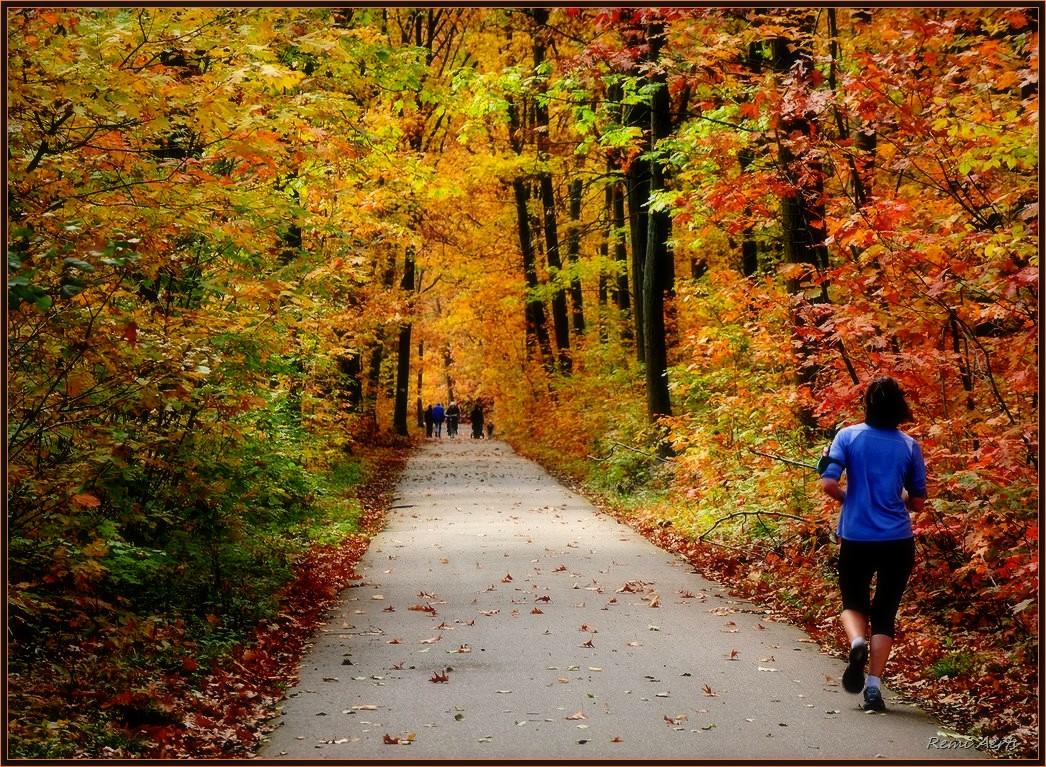 """фото """"***"""" метки: пейзаж, природа, стрит-фото, woman, осень"""