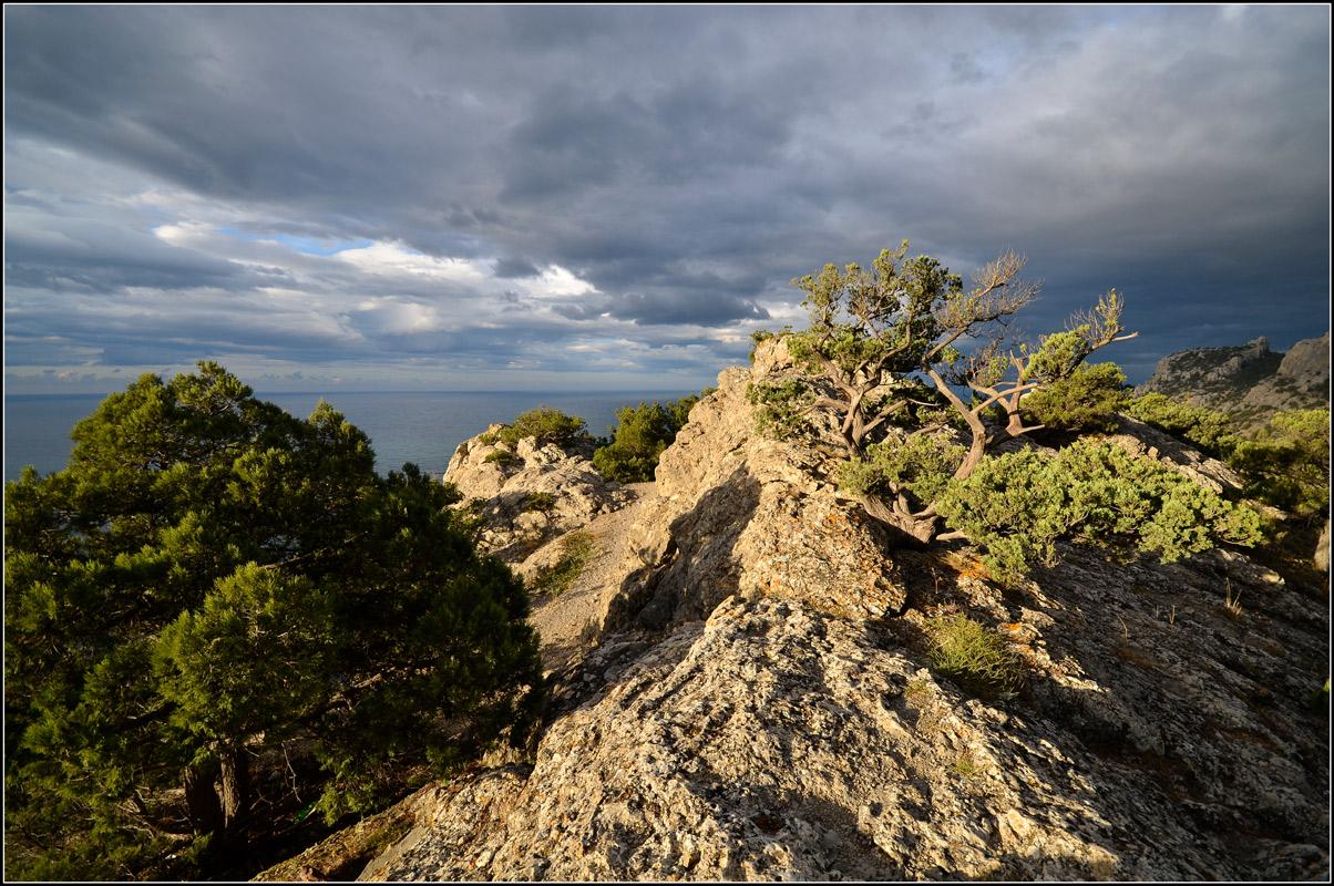 "фото ""Утро на вершине"" метки: пейзаж, природа, путешествия,"