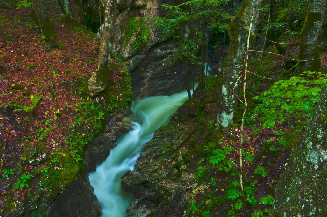 """фото """"Mostnica"""" метки: пейзаж, Europe, Slovenija, forest, вода, горы, осень"""