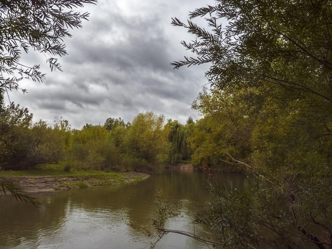 """фото """"В ожидании бабьего лета..."""" метки: пейзаж, природа, вода, деревья, облака, осень"""