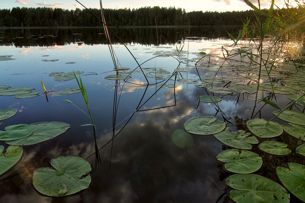"фото ""***"" метки: пейзаж, вода, красиво, лето, отражение"