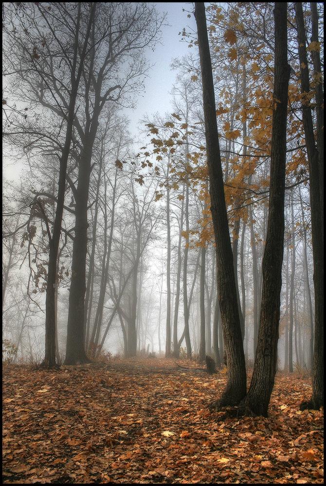 """фото """"Осень..."""" метки: пейзаж,"""