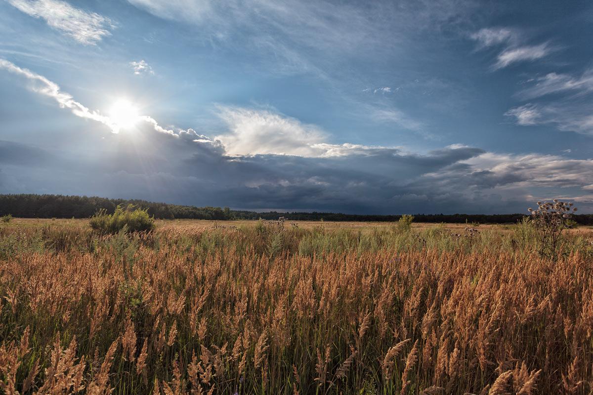 """фото """"***"""" метки: природа, лето, облака"""