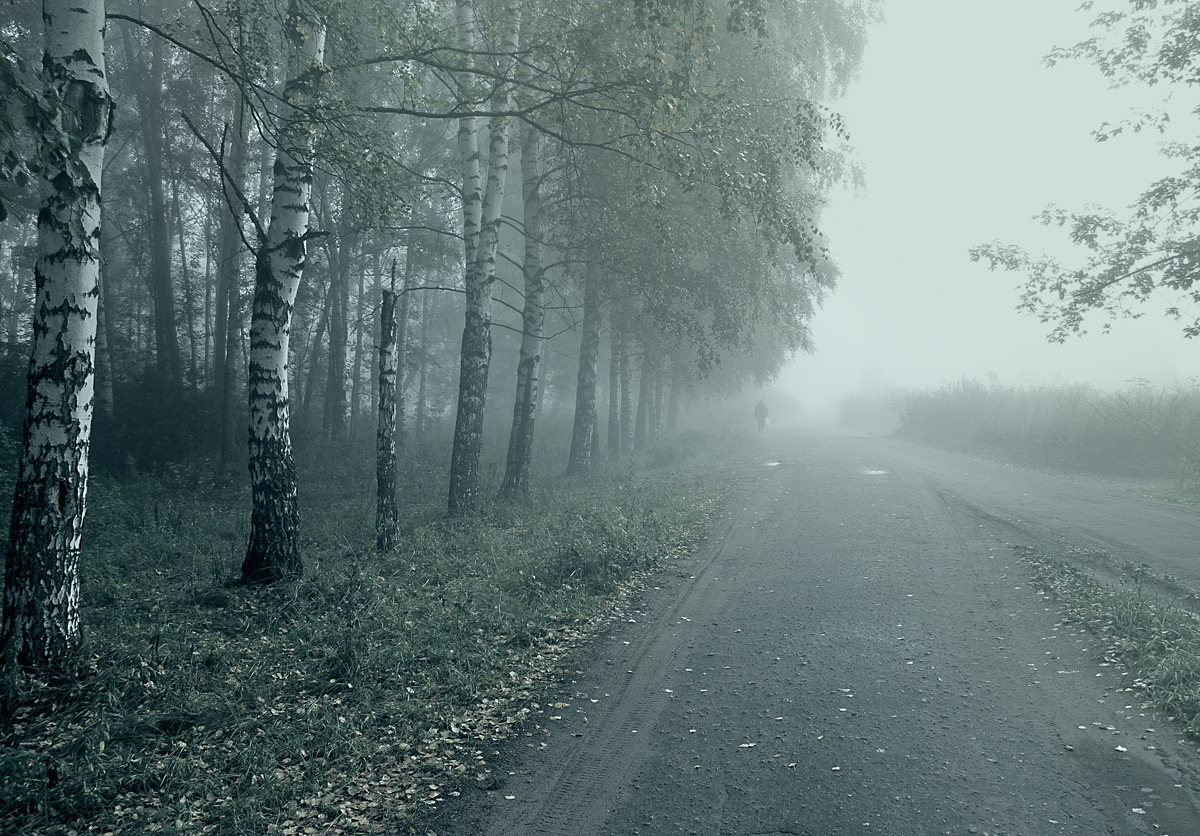 "фото ""В пелене осеннего тумана"" метки: пейзаж,"