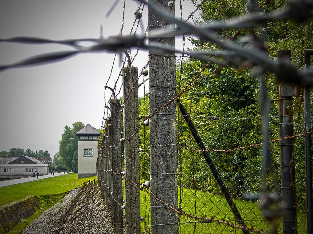 "фото ""Fences of hawthorns and electrical fence in Dachau"" метки: архитектура,"