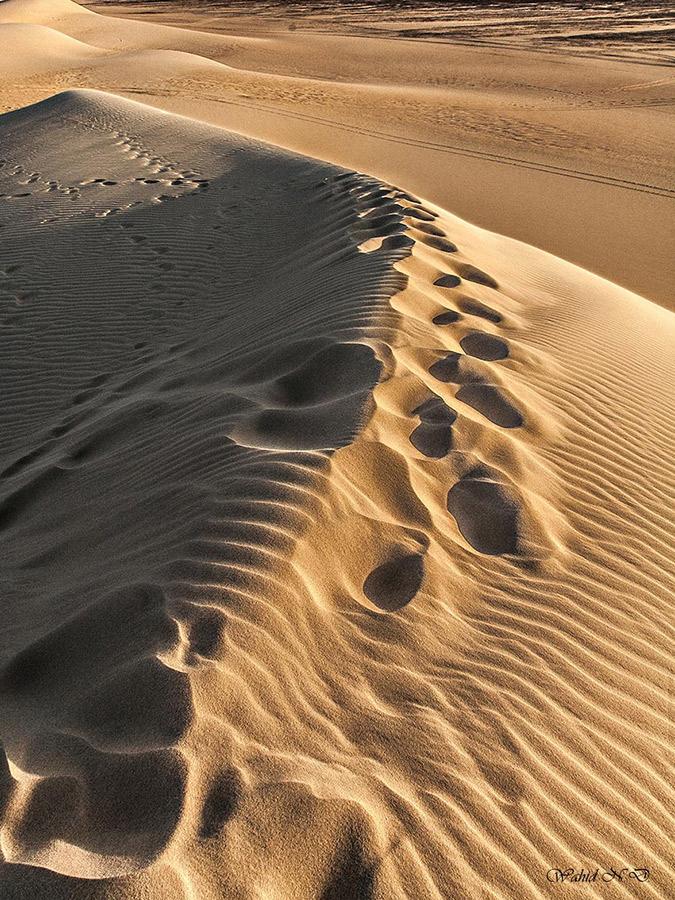 """фото """"Impressions, prints and ripples"""" метки: пейзаж, путешествия, природа, desert, Африка"""