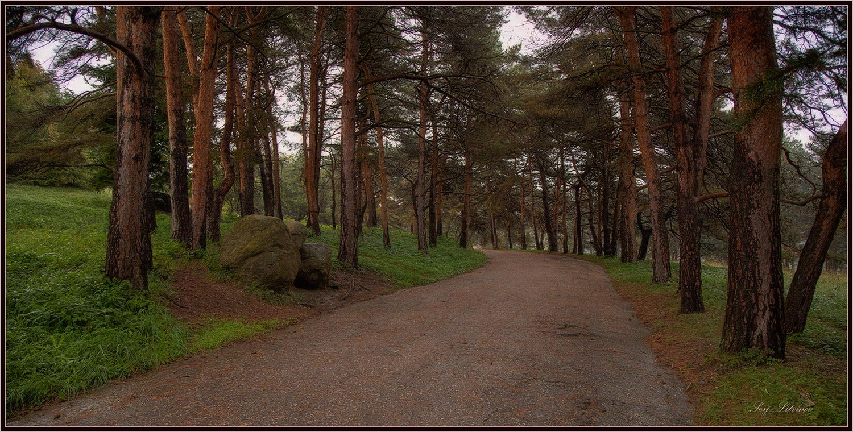 """фото """"***"""" метки: пейзаж, дождь, осень, парк"""