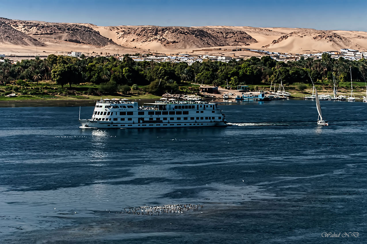 "фото ""The River Nile"" метки: пейзаж, путешествия, природа, desert, Африка, вода"