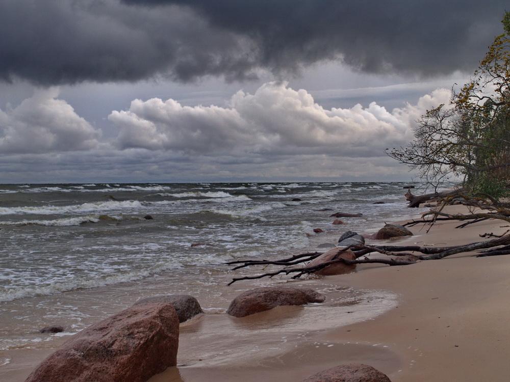 """фото """"Осенний Шторм.Прибой"""" метки: пейзаж, путешествия, природа, Финский залив пляж Сака"""