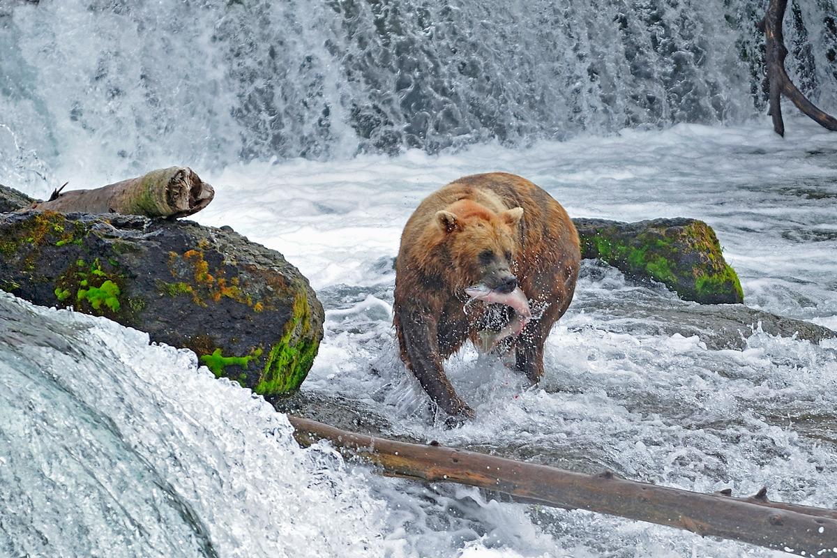 """фото """"Рыбалка на порогах"""" метки: природа, путешествия,"""