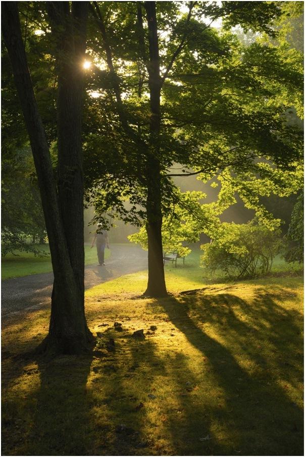 """фото """"***"""" метки: пейзаж, мужчина, осень"""