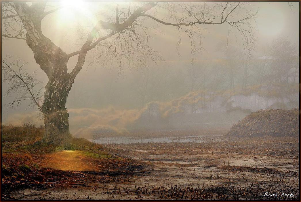 """фото """"Photo 2600"""" метки: пейзаж, природа, рассвет"""