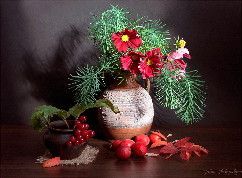 "фото ""Осенние сумерки"" метки: натюрморт, природа,"