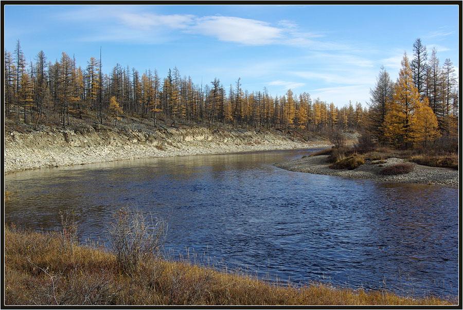 "фото ""Поздняя осень"" метки: пейзаж, Сытыкан, Якутия, осень, река, тайга"