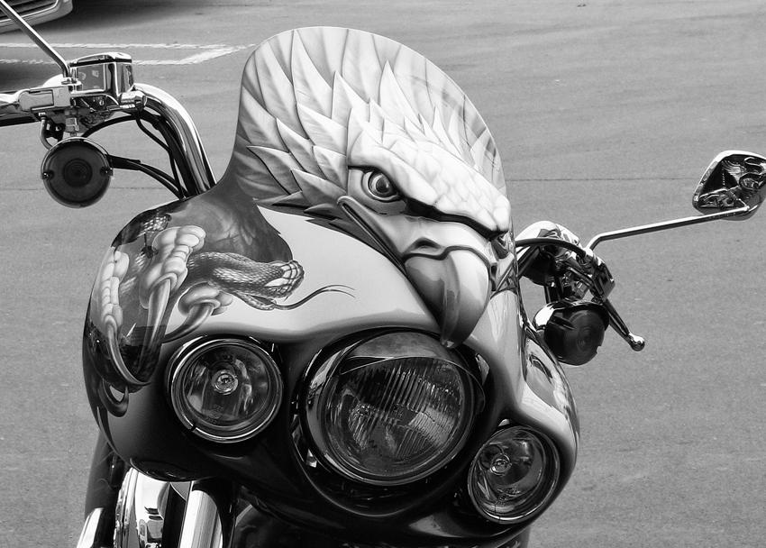 """фото """"Городской орел"""" метки: черно-белые, техно"""
