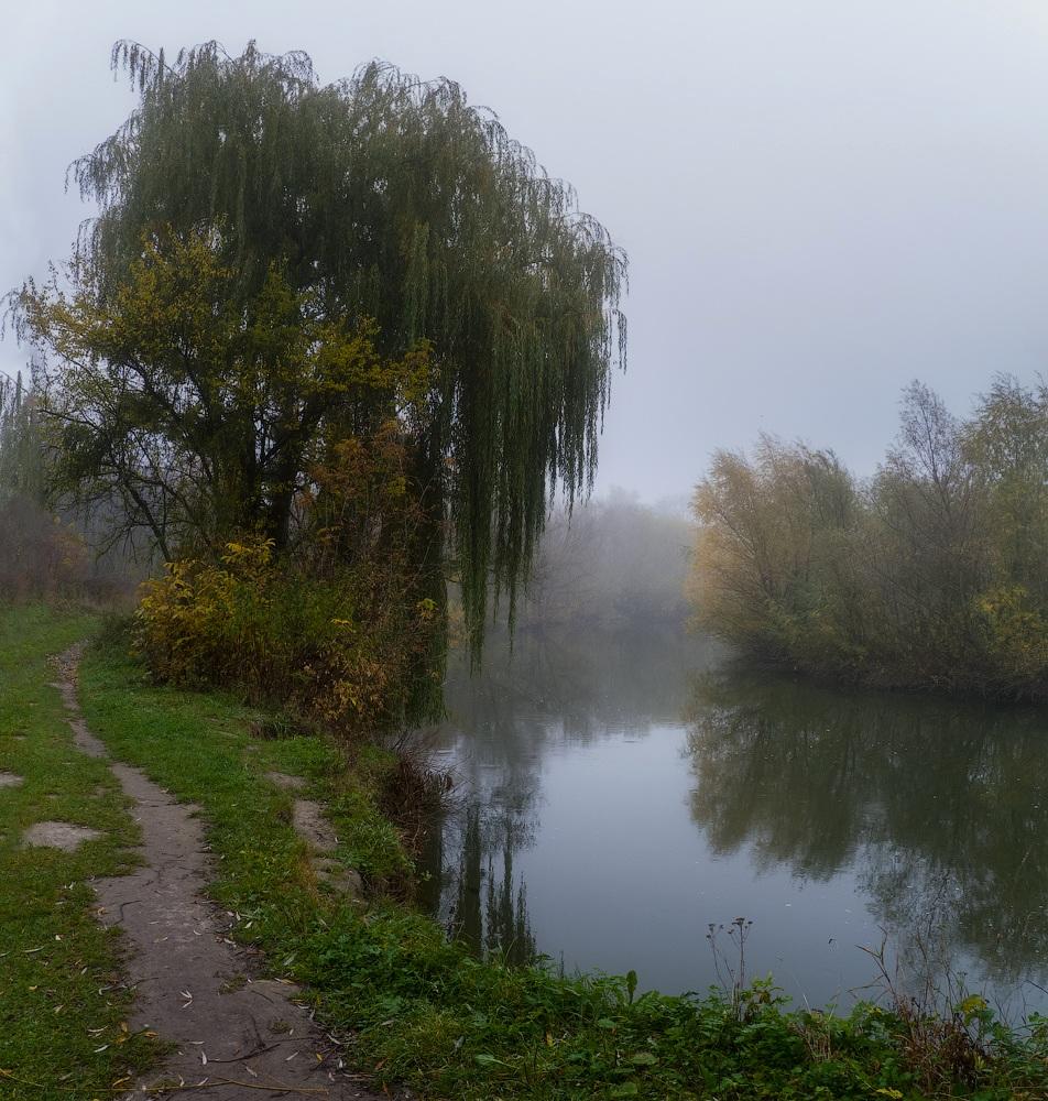 "фото ""Тропинка в осень..."" метки: пейзаж, природа, панорама, ива, осень, река"