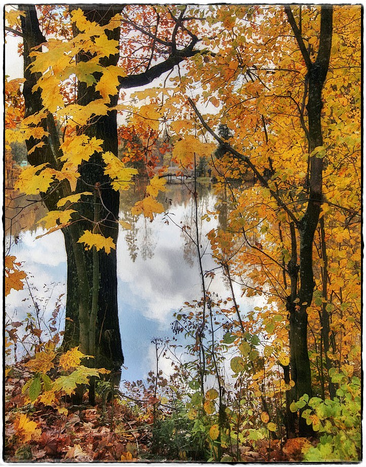 """фото """"золотая осень"""" метки: пейзаж, природа,"""