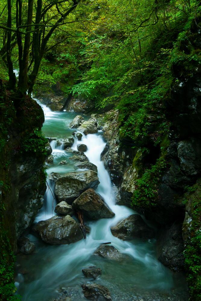"фото ""Tolminka"" метки: пейзаж, Europe, Slovenija, вода, горы"