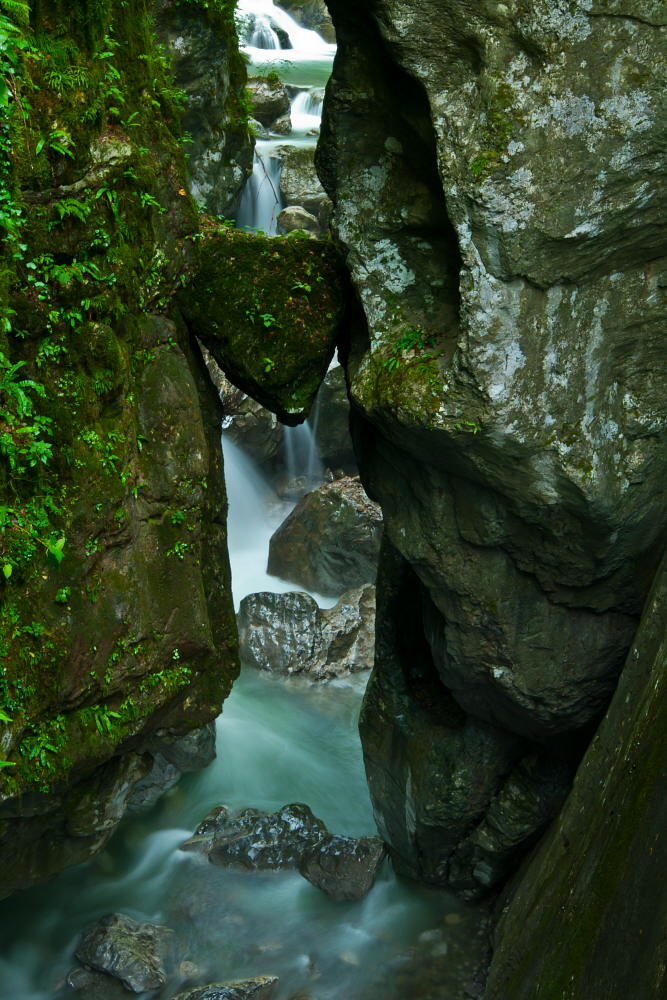 "фото ""Tolminka"" метки: пейзаж, Europe, Slovenija, forest, вода"