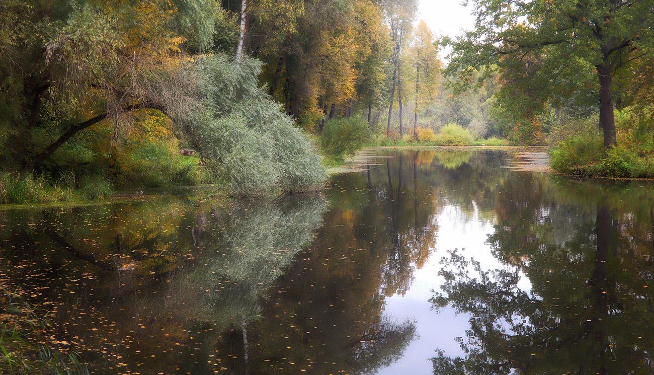 """фото """"В тишине"""" метки: пейзаж, природа,"""