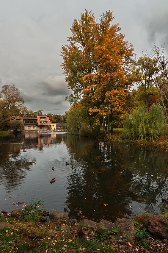 """фото """"Осенняя..."""" метки: пейзаж, вода, деревья, небо, осень, отражения"""