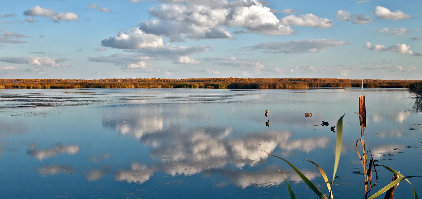 """фото """"Октябрьская"""" метки: пейзаж,"""