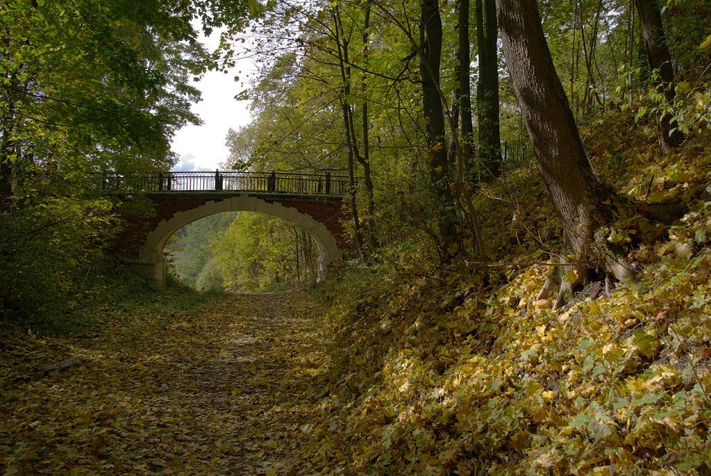 "фото ""Старый мост через овраг."" метки: пейзаж, архитектура,"