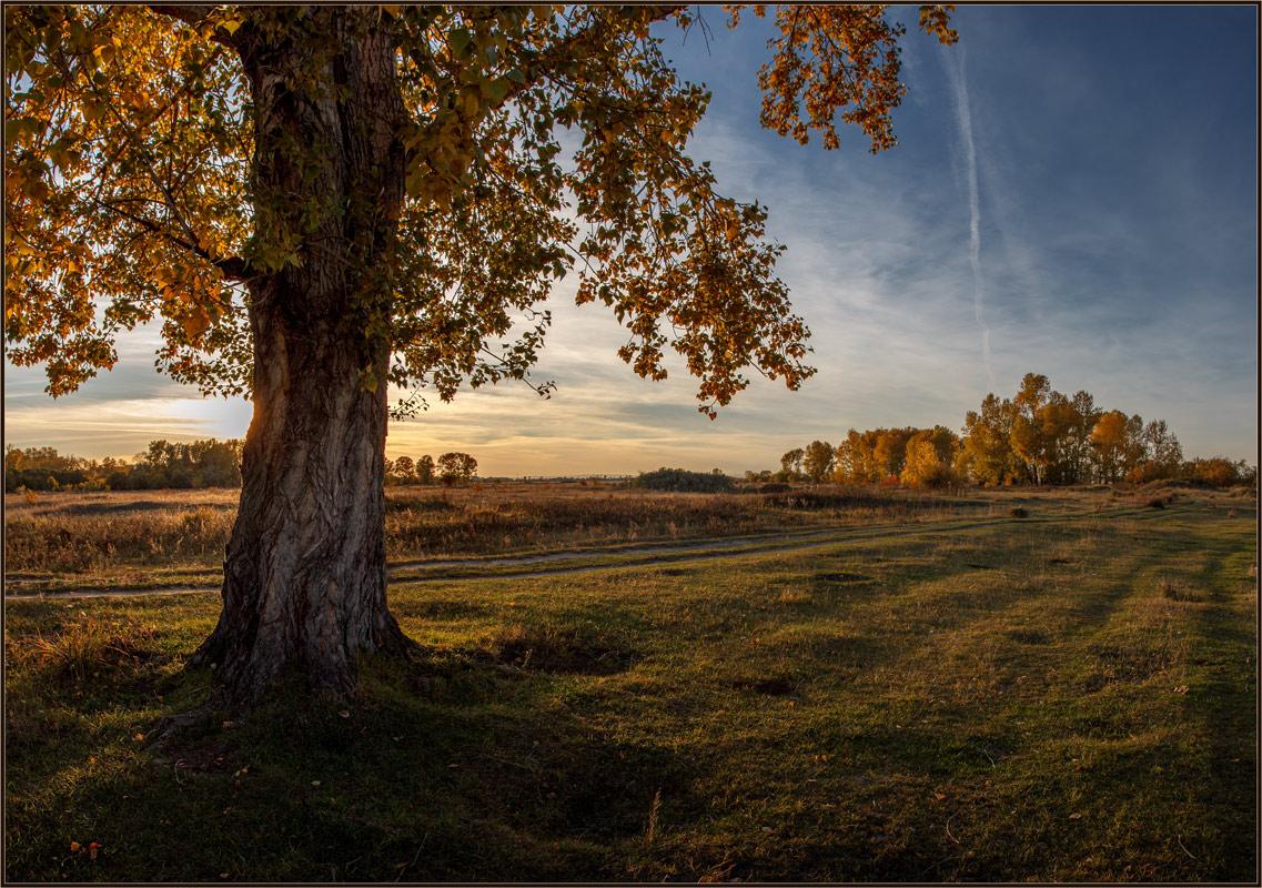 "фото ""Уж осень ... ."" метки: пейзаж, природа,"