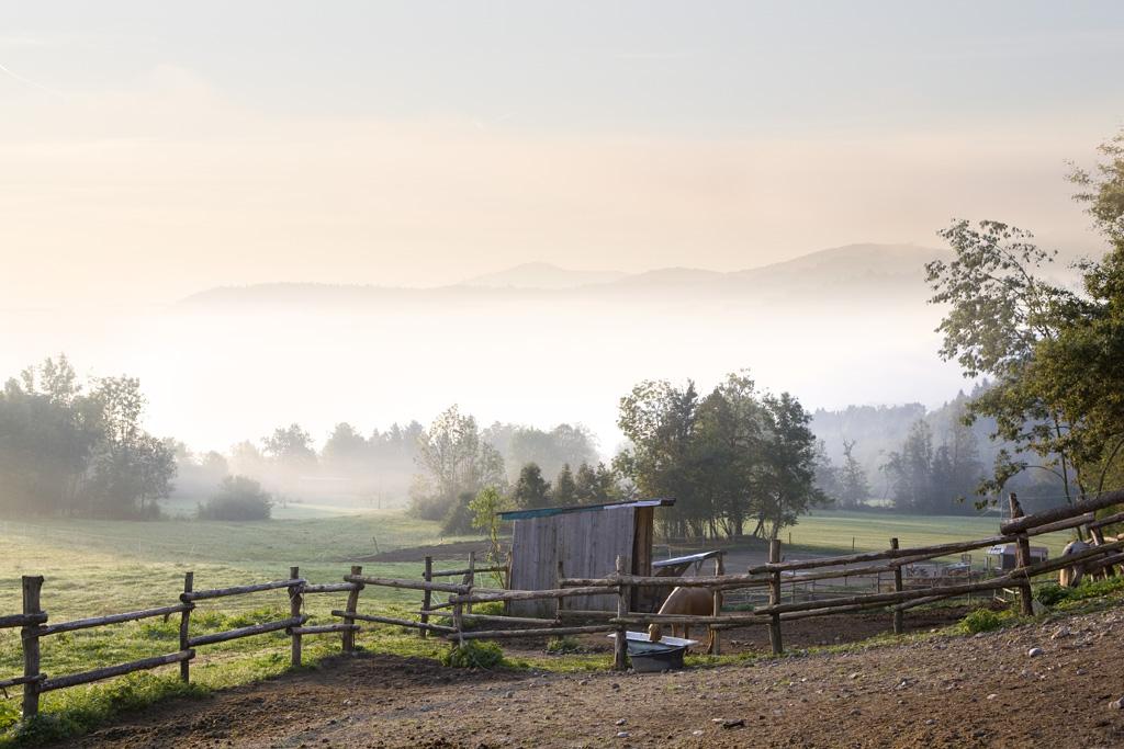 """фото """"Morning"""" метки: пейзаж,"""