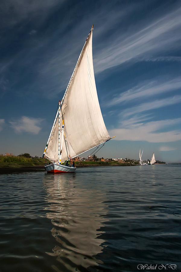 "фото ""Gliding on the Nile"" метки: пейзаж, путешествия, природа, Африка, вода"