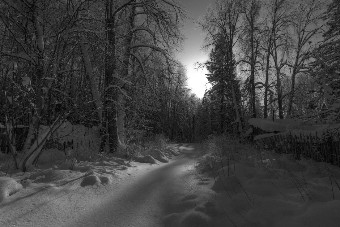 черно белые фотографии зимы мемчик можно скачать