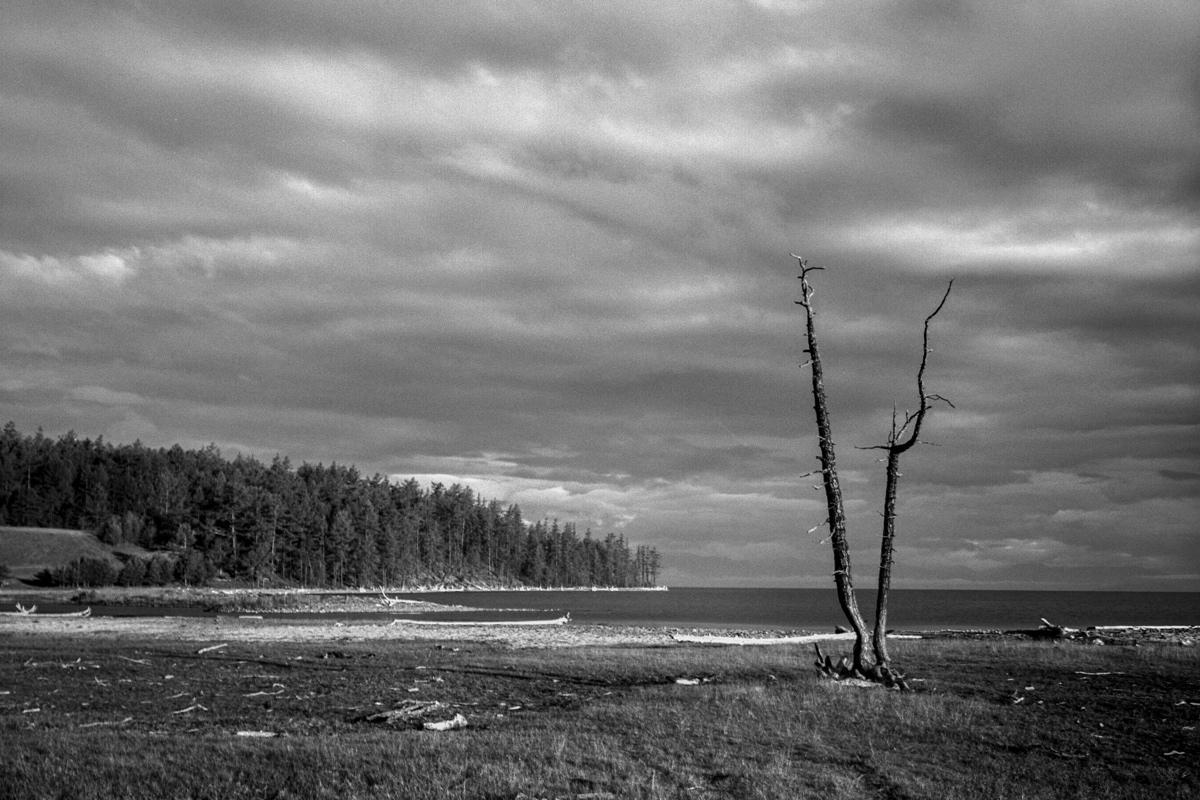 """фото """"Монголия-Прихубсугулье"""" метки: пейзаж, черно-белые,"""