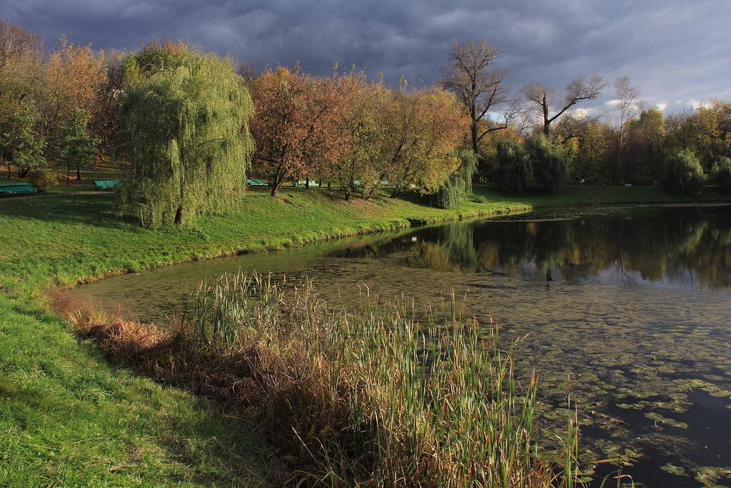 "фото ""Буря мглою небо кроет (с)"" метки: пейзаж, природа, вода, зелень, небо, осень, солнце, тучи"