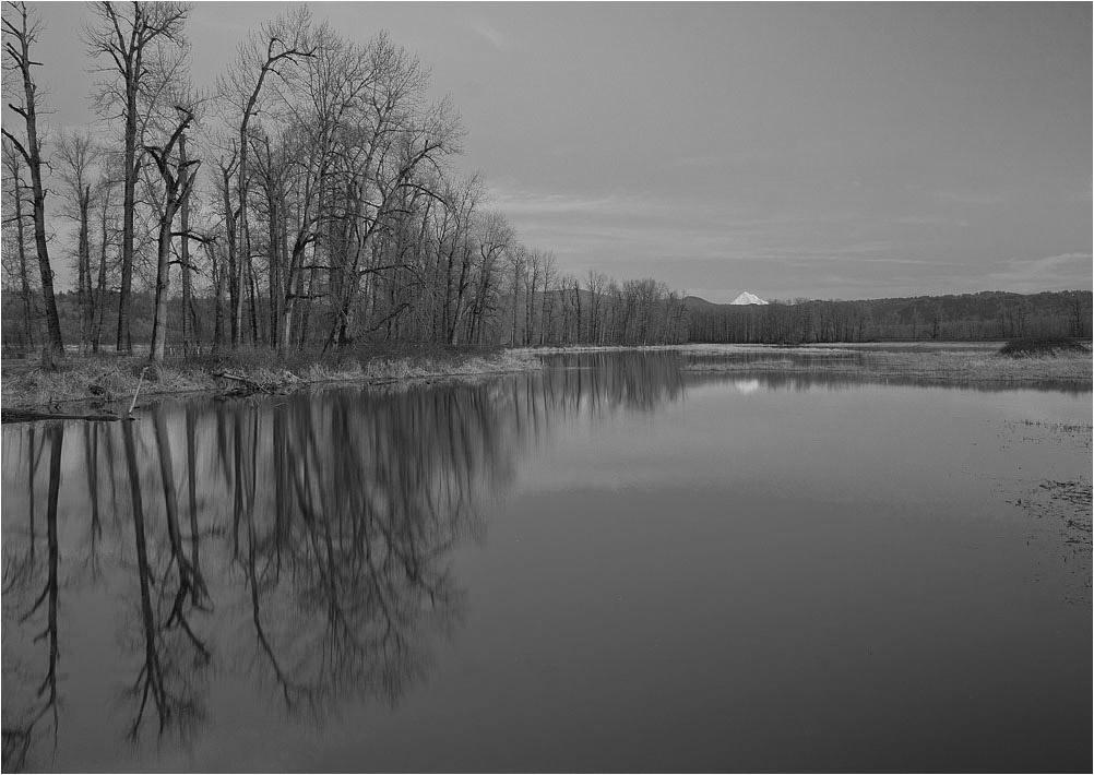 "фото ""Тишина"" метки: пейзаж, черно-белые,"