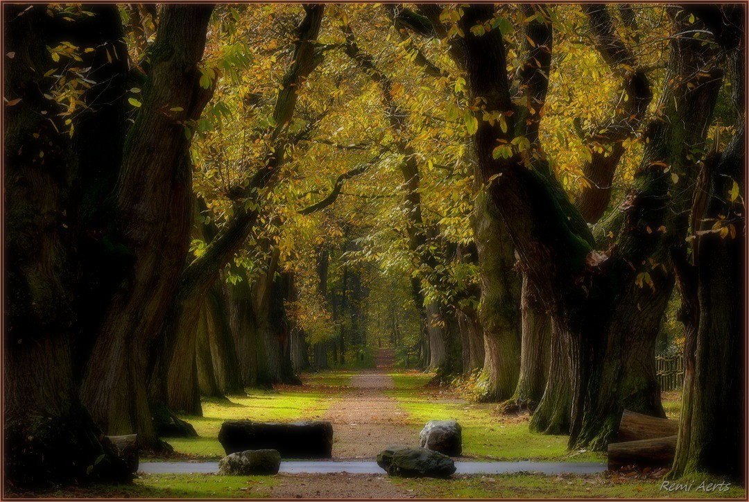"фото ""***"" метки: пейзаж, природа, стрит-фото,"