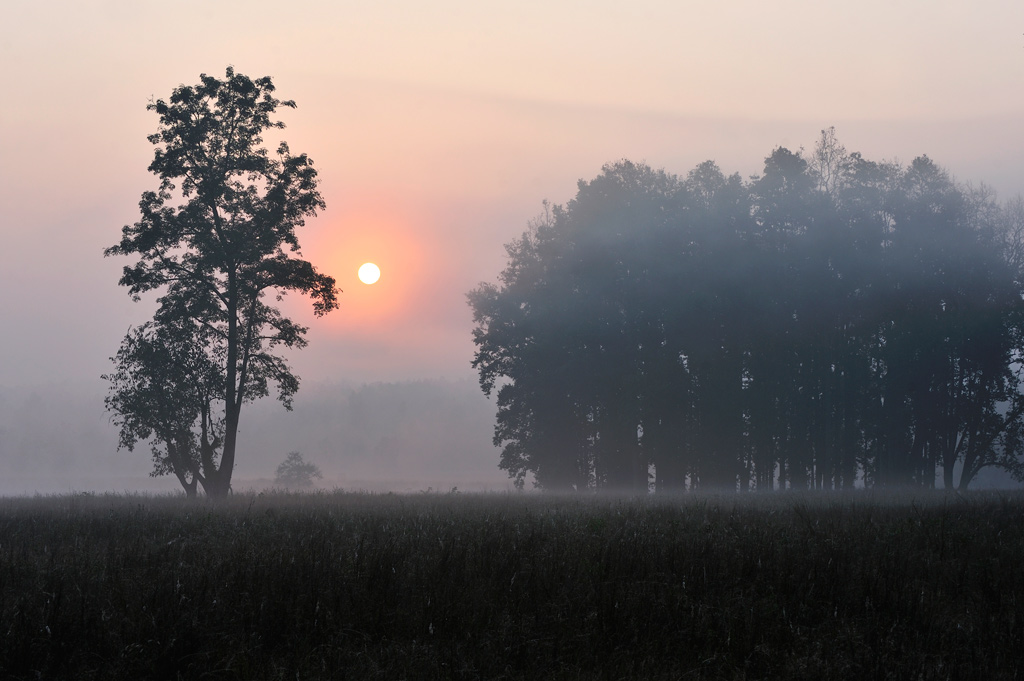 """фото """"Утренняя зорька"""" метки: пейзаж, путешествия,"""
