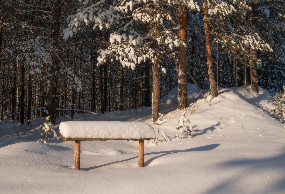 приглашенных фото скамейка зимой новые лоты запросу