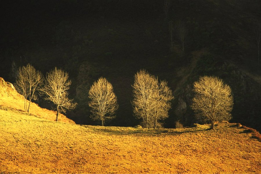 "фото ""ombre et lumière"" метки: пейзаж, Europe, artistic, color, digital, fine art, landscapes, numeric, photography, surrealist, wood, небо"