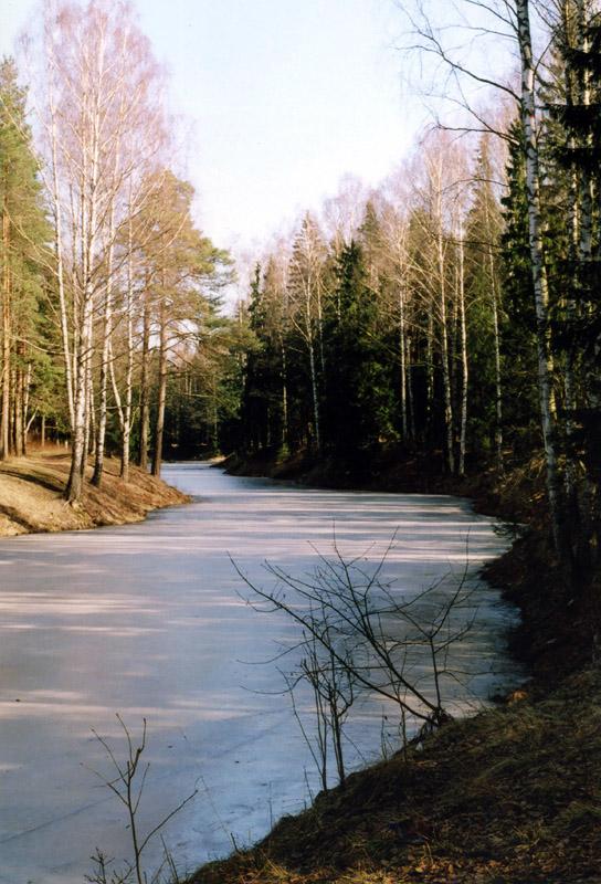 "фото ""Вспоминая о весне"" метки: пейзаж, весна, лед, лес, март, пруд"