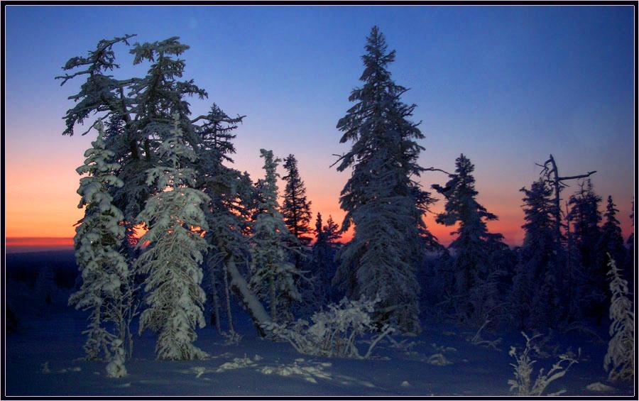 Красота мороза и зимы картинки анимация компаний занимающихся