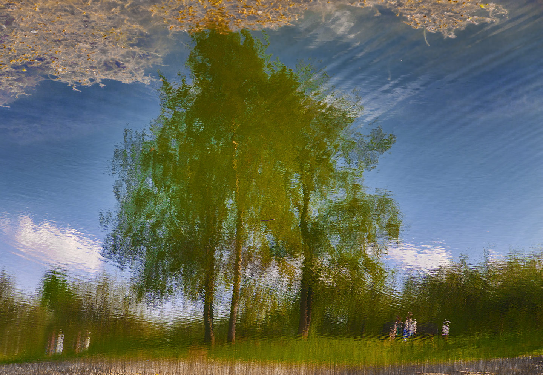 "photo ""***"" tags: landscape, nature, abstract, people, pond, sky, деревья, отражение"