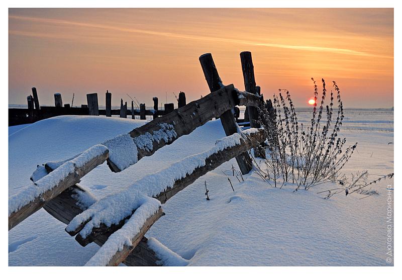 "фото ""У старой изгороди"" метки: пейзаж, архитектура, закат, зима"