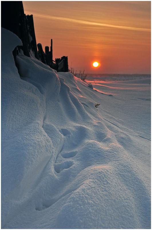 "фото ""Намело"" метки: пейзаж, закат, зима"