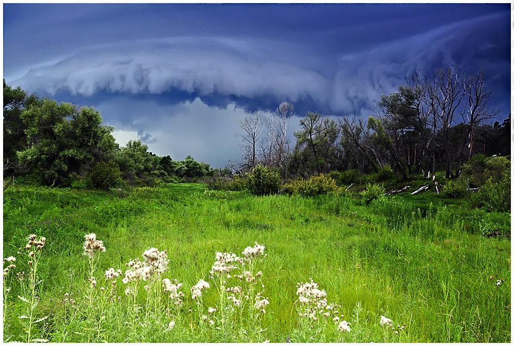 "фото ""Цунами"" метки: пейзаж, лето, облака"