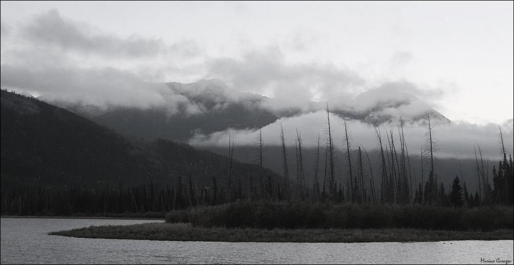 """фото """"cloudy"""" метки: пейзаж, природа, forest, Северная Америка, вода, горы, облака"""