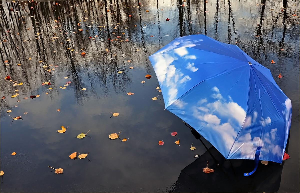 Обои на рабочий стол зонтики дождь