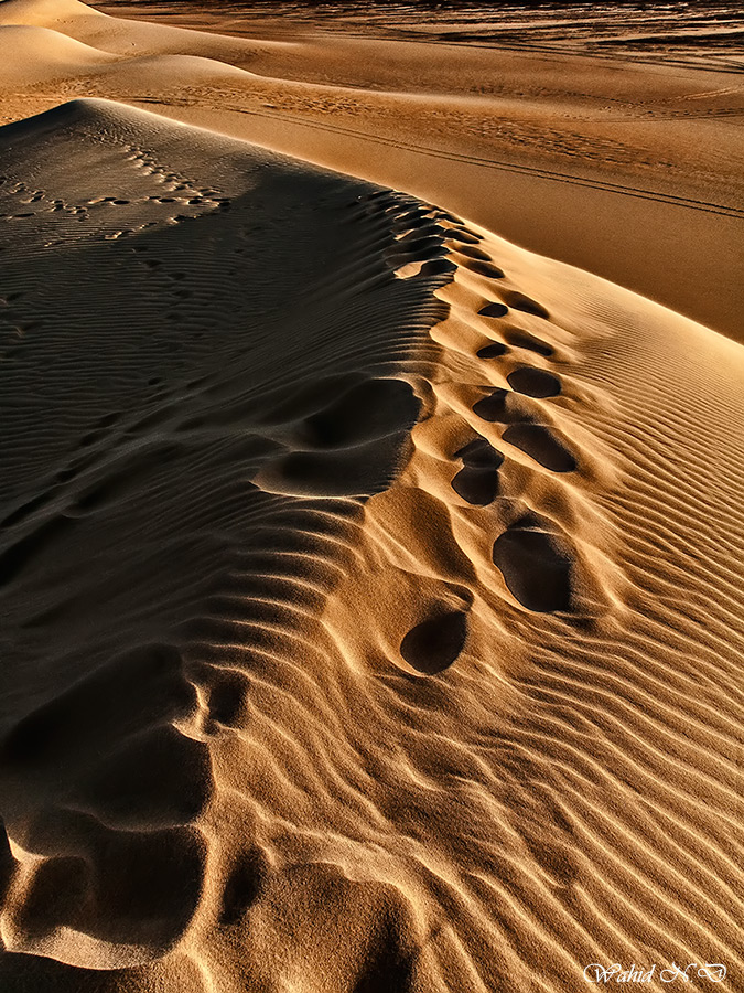 "photo ""Traces and ripples"" tags: landscape, travel, nature, Africa, Sand, desert"