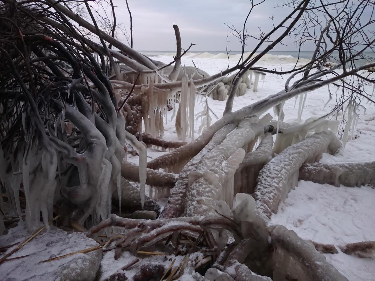 "photo ""Beach froze"" tags: travel, nature, Финский залив пляж Сака"